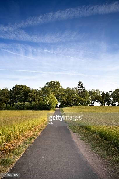 country road, wiese - ollo stock-fotos und bilder