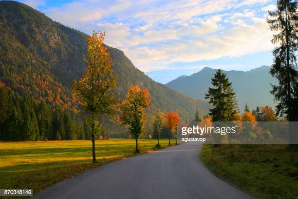 country road - mountain pass to alpine landscape in austrian tirol, near karwendel mountain range and bavarian alps in germany - majestic alpine landscape in gold colored autumn, dramatic tyrol mountains panorama and idyllic tirol meadows, austria - karwendel mountains stock pictures, royalty-free photos & images