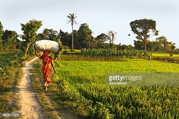 country road passing thru farms - tripura state stock pictures, royalty-free photos & images