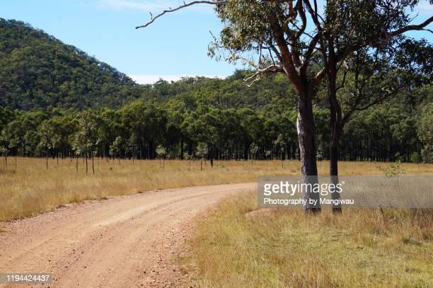 country road - western australia imagens e fotografias de stock