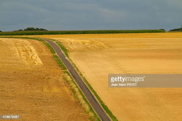 country road - jean marc payet stockfoto's en -beelden