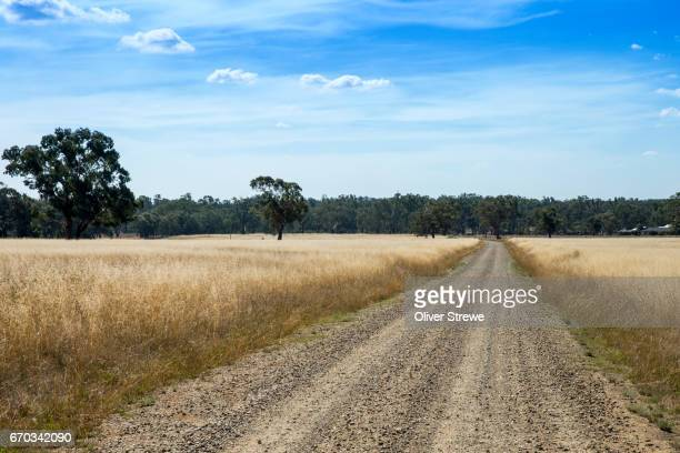 country road - wagga wagga stock pictures, royalty-free photos & images