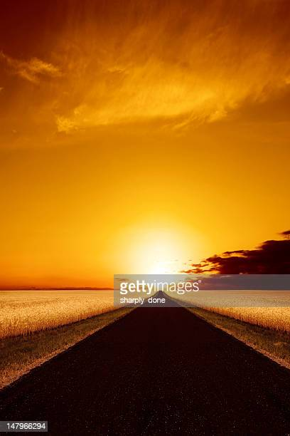 XXXL country road sunset