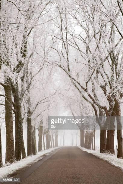 Landweg door een bevroren winterse landschap