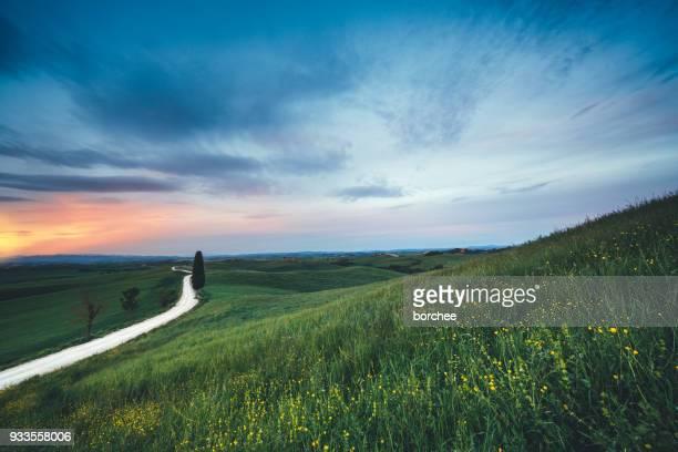 Landstraße durch die Tuscany-Felder