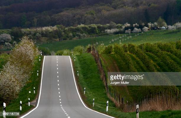 Country road, Thuringia, Germany