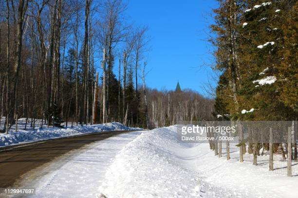country road to the abbey - abbey road stock pictures, royalty-free photos & images