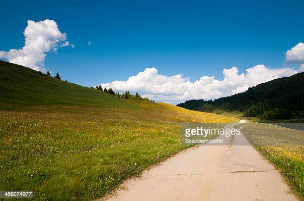 Country road, vibrant colours
