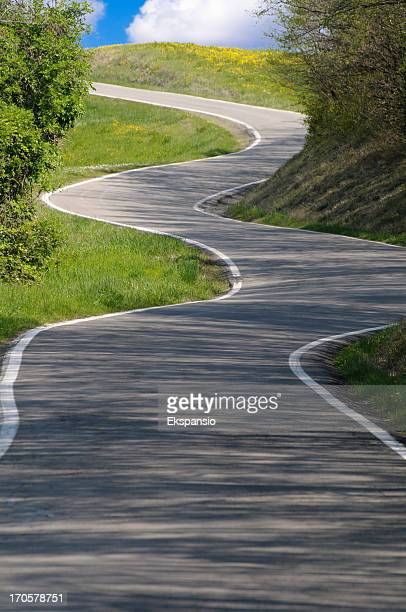 Country Road Winding from Shadow into Sunshine and Bright Future