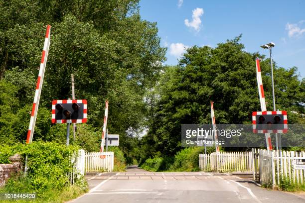 country road with a railroad level crossing with the gates raised. - railroad crossing stock pictures, royalty-free photos & images