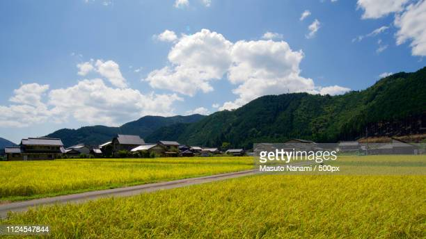 a country side - 岐阜県 ストックフォトと画像