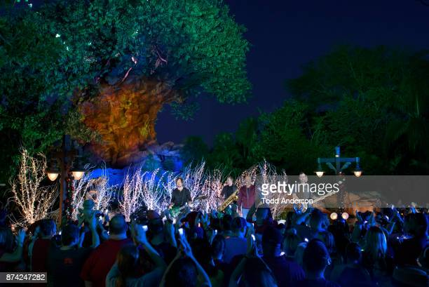 CELEBRATION Country star Darius Rucker performs at Disneys Animal Kingdom at Walt Disney World Resort in Lake Buena Vista Fla Saturday Nov 4 during a...