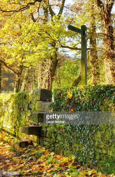 Stile Stock Photos And Pictures