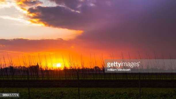 country sunset - william mevissen foto e immagini stock