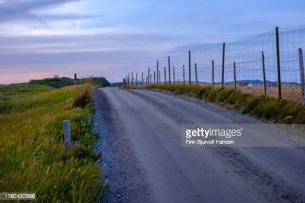 countryroad with fence on the right side, gras and flowers on the left side. photographed at sunset - finn bjurvoll stock photos and pictures