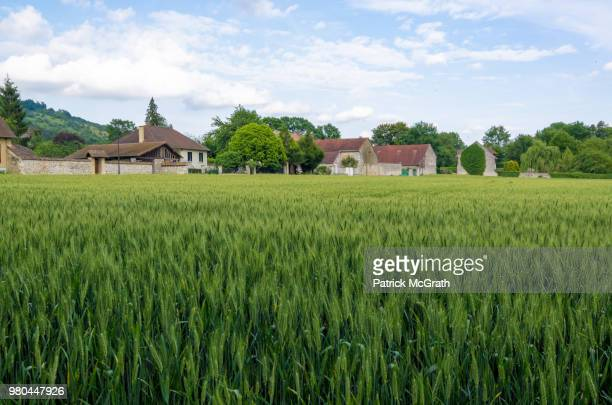 Countryside and farmland, Giverny, Normandy, France