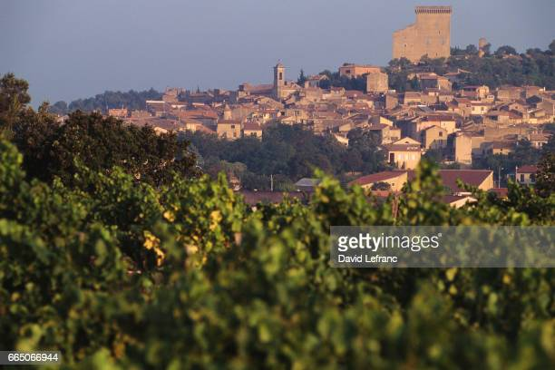 Countryside and homes characteristic of the the city of ChateauneufduPape in the Vaucluse department of France