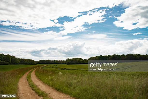 a path in the french countryside, in charente. - charente stock pictures, royalty-free photos & images