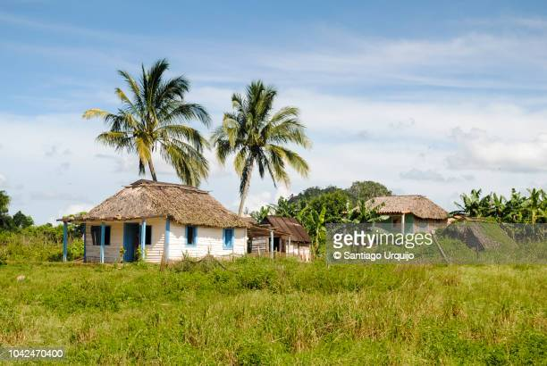 countryside houses in rural setting - pinar del rio stock photos and pictures
