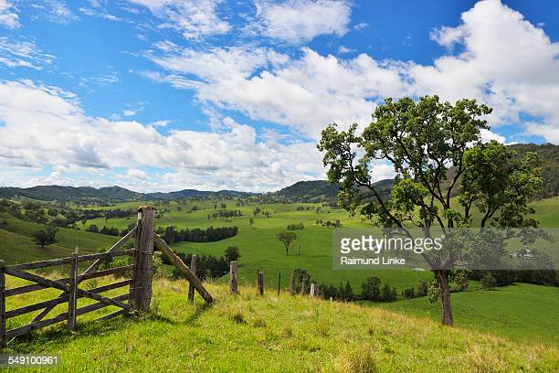 Countryside in Summer