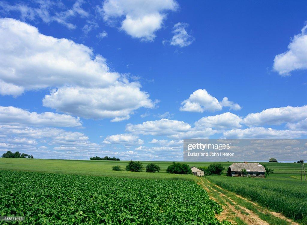 Countryside, Krakow District Poland : Stock Photo