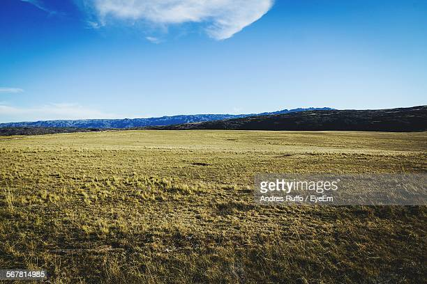 countryside landscape against blue sky - andres ruffo stock pictures, royalty-free photos & images