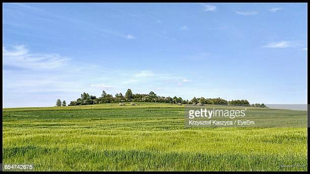 Countryside Landscape Against Blue Sky