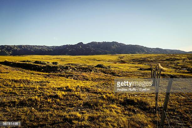 countryside landscape against clear sky - andres ruffo stock pictures, royalty-free photos & images