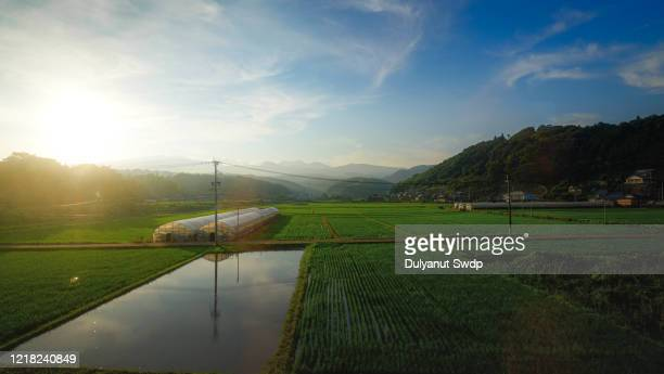 countryside landscape at kyushu ,japan - satoyama scenery stock pictures, royalty-free photos & images