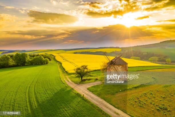 landschap van het platteland met windmolen en raapzaadgebied, moravië, tsjechische republiek - tsjechië stockfoto's en -beelden