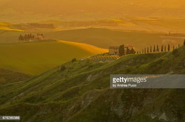 countryside near volterra, tuscany, italy - volterra stock photos and pictures