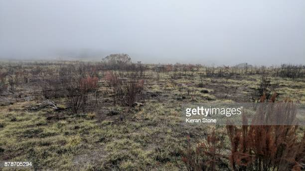 Countryside of Andringitra National Park