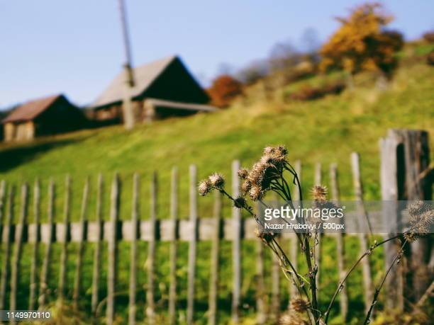 countryside - nazar stock photos and pictures