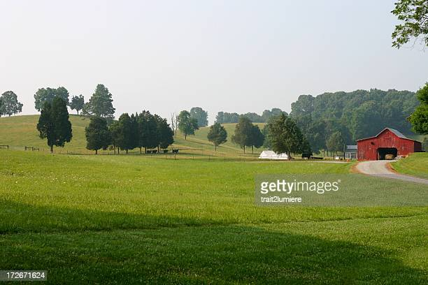 countryside - tennessee stock pictures, royalty-free photos & images