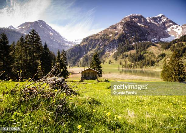 countryside - file:the_wyoming,_orlando,_fl.jpg stock pictures, royalty-free photos & images