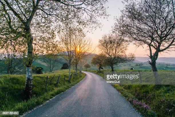 countryside road at sunset - country road stock photos and pictures
