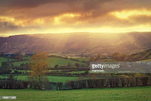 countryside sunrise - county antrim stock pictures, royalty-free photos & images