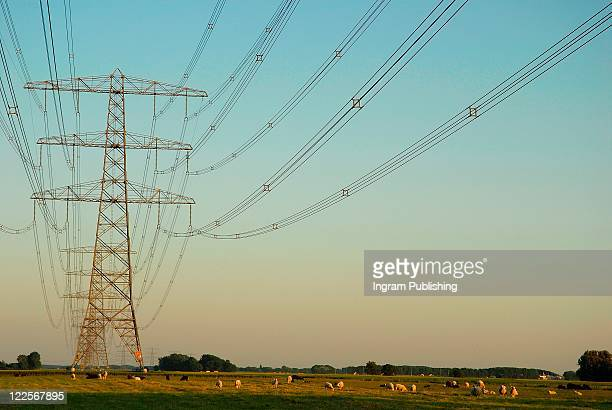 Countryside view with electricity pylon