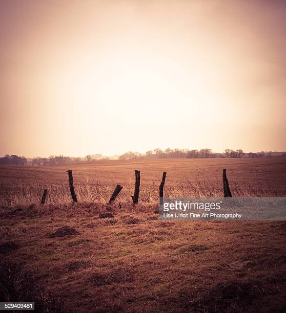 countryside with old fence - lise ulrich stock pictures, royalty-free photos & images