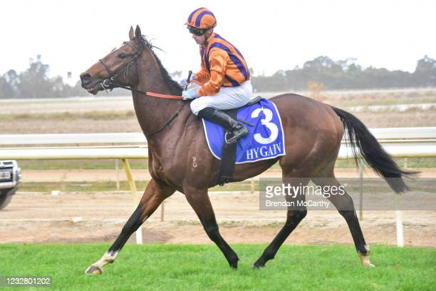 Coup De Tonnerre ridden by Daniel Moor returns to the mounting yard after winning the Echuca Newsagency BM58 Handicap at Echuca Racecourse on May 10,...