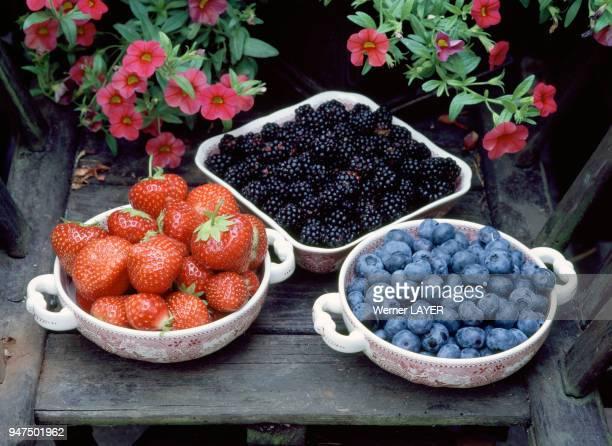fraises mûres myrtilles