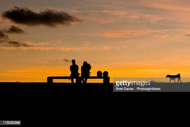 A couple and a dog silhouette