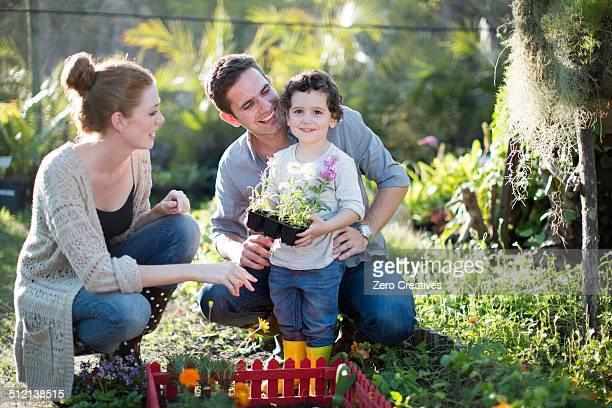 Couple and son planting miniature garden on allotment