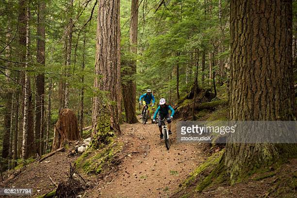 Couple biking in an old growth forest