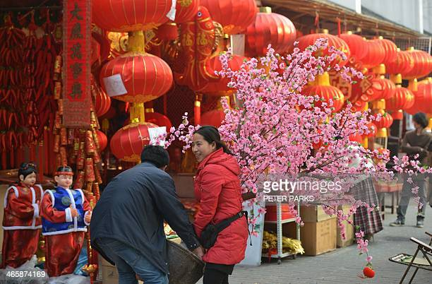 A couple carry a cherry blossom tree at a Chinese New Year street fair on the eve of the holiday in Shanghai on January 30 2014 China is preparing to...