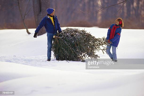 Couple carrying Christmas tree through snow