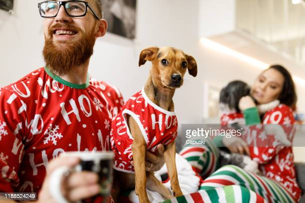 couple celebrating christmas with dogs on sofa - ugly christmas sweater party stock pictures, royalty-free photos & images