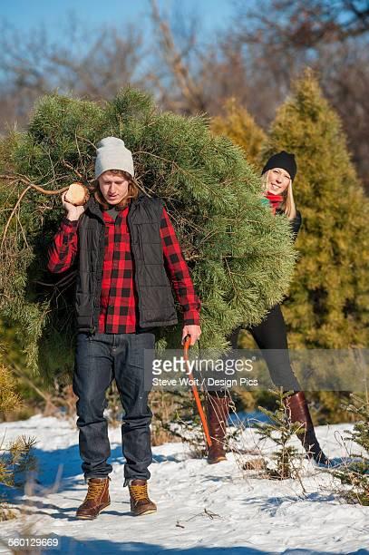 A couple choosing and cutting a fresh Christmas tree at a Christmas tree farm