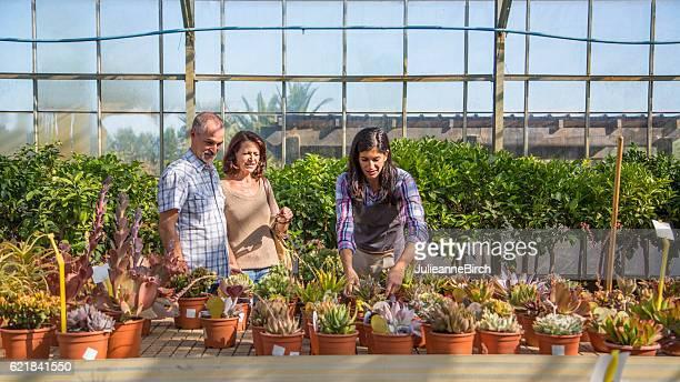 Couple chosing plants in garden center