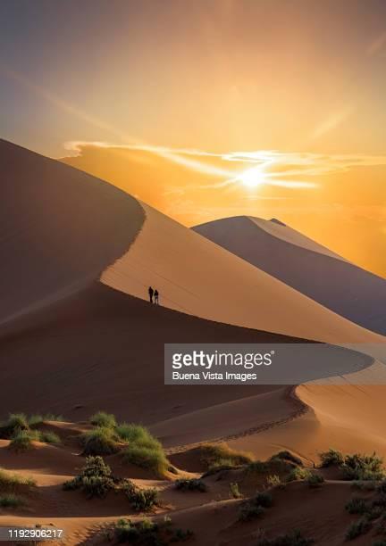 couple climbing sand dune - ナミブ砂漠 ストックフォトと画像
